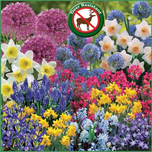 Deer Resistant Spring Gardens COM f16 image web
